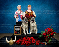 Northern Illinois Norwegian Elkhound Assoc  July 2017