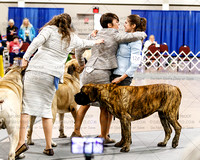 MCOA Best of Breed