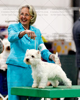 West Highland White Terriers, Friday
