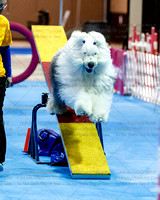 Agility - Part 4 of 4